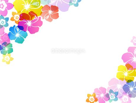 夏のトロピカルイメージ 背景素材のイラスト素材 [FYI01247110]
