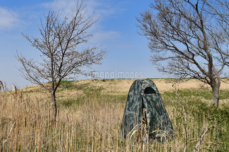 野鳥撮影用のテントの写真素材 [FYI01247279]