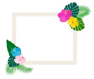 国の植物や花と額縁のイラスト素材 [FYI01247296]