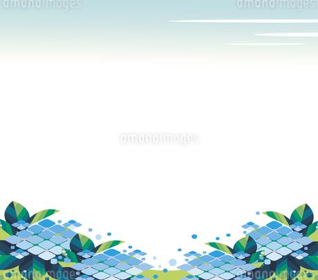 紫陽花の花の背景のイラスト素材 [FYI01247409]