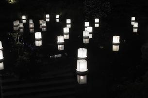 灯篭流しのイメージの写真素材 [FYI01247536]