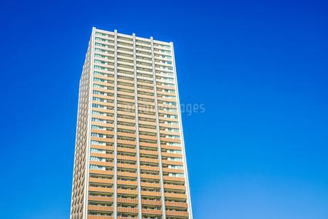 武蔵小杉の高層マンション群の写真素材 [FYI01247621]