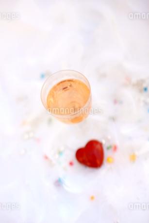 ピンクシャンパンの写真素材 [FYI01247825]