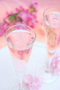 桜のシャンパンの写真素材 [FYI01247827]