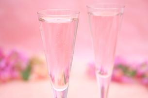 桜のシャンパンの写真素材 [FYI01247830]