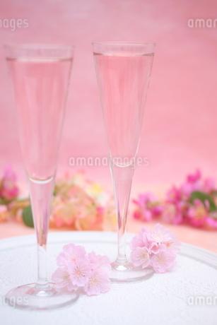 桜のシャンパンの写真素材 [FYI01247832]