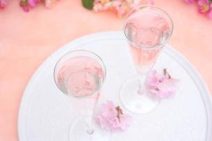 桜のシャンパンの写真素材 [FYI01247834]