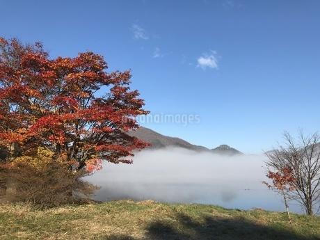 朝の榛名湖の写真素材 [FYI01248396]
