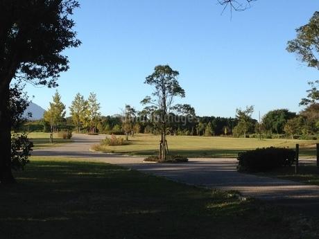 公園の素材の写真素材 [FYI01248642]