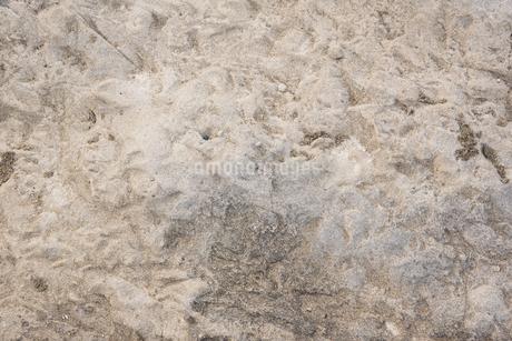 灰色のでこぼこの岩の表面の写真素材 [FYI01248682]