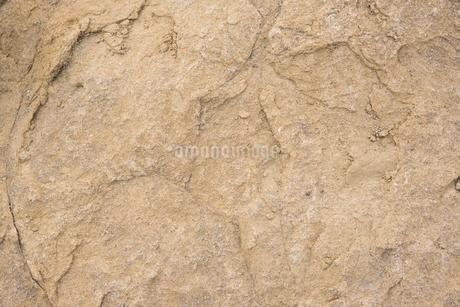茶色の岩の表面の写真素材 [FYI01248683]