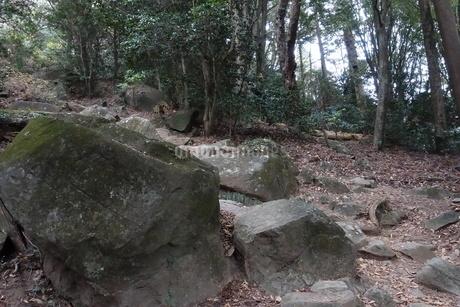 筑波山の岩の写真素材 [FYI01248918]