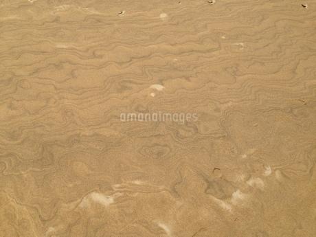 鳥取砂丘の写真素材 [FYI01248921]