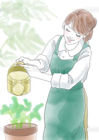 花屋の女性のイラスト素材 [FYI01249204]
