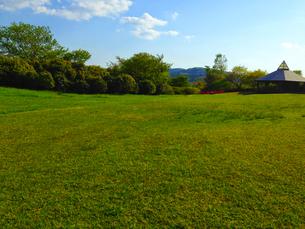 公園の写真素材の写真素材 [FYI01249268]