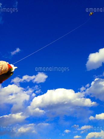 凧揚げの写真素材の写真素材 [FYI01249315]