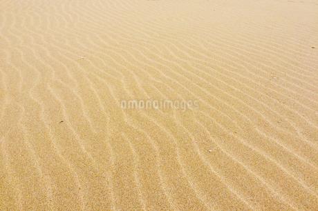 砂の波紋の写真素材の写真素材 [FYI01249324]