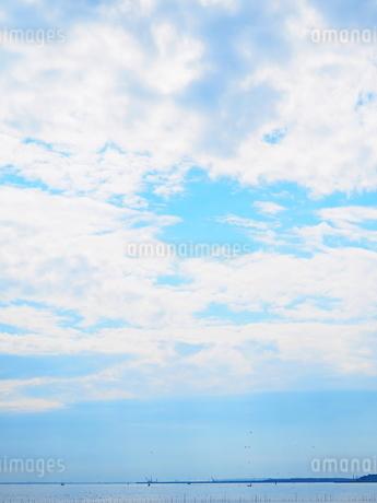 葛西臨海公園 汐風の広場の写真素材 [FYI01249523]