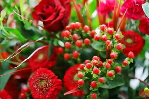 カラフルな花束 バラや小花の写真素材 [FYI01249526]