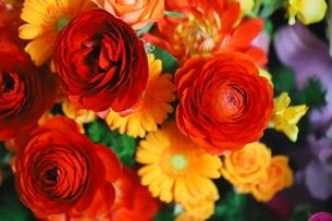 カラフルな花束 バラや小花の写真素材 [FYI01249540]