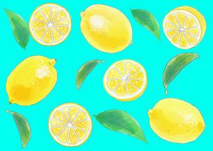 レモンのパターンのイラスト素材 [FYI01249715]