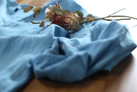 リネンの洋服のディスプレイの写真素材 [FYI01249822]