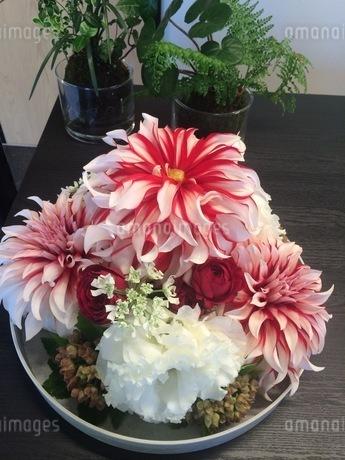 生け花の写真素材 [FYI01249858]