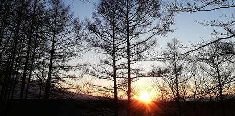 冬 日没前の写真素材 [FYI01249870]