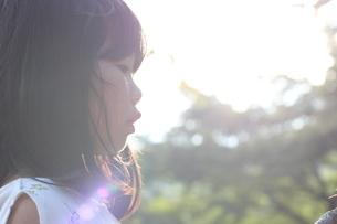 夏の光の写真素材 [FYI01249961]