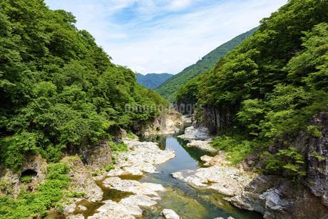 新緑の龍王峡の写真素材 [FYI01250025]