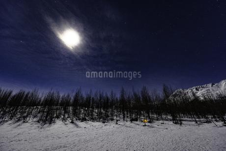 月明かりとキャンプ風景の写真素材 [FYI01250030]