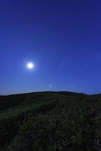 礼文島の月明かりの写真素材 [FYI01250043]