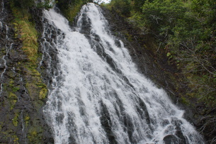 知床八景 オシンコシンの滝の写真素材 [FYI01250119]