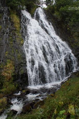 知床八景 オシンコシンの滝の写真素材 [FYI01250120]