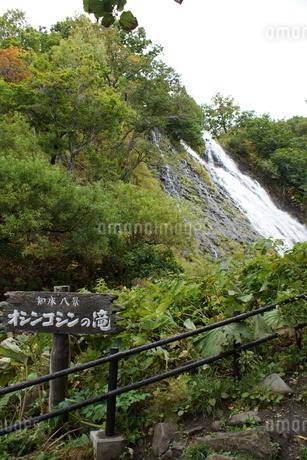 知床八景 オシンコシンの滝の写真素材 [FYI01250122]