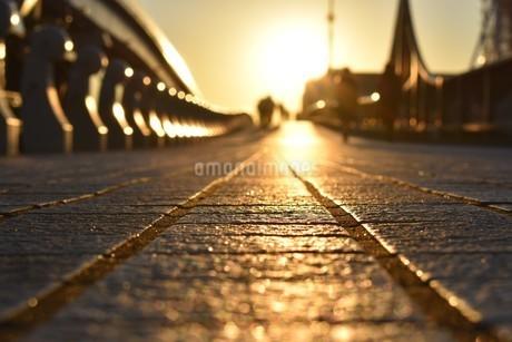 夕日の写真素材 [FYI01250438]