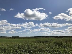 北海道の空と大地の写真素材 [FYI01250579]