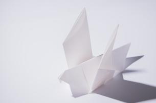 白い鳩の折り紙の写真素材 [FYI01250894]