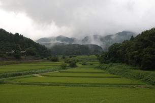 雨上がりの田園風景の写真素材 [FYI01250933]