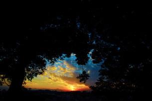 森の中から見える夕暮れの写真素材 [FYI01250938]
