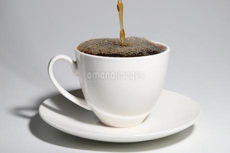 コーヒーの写真素材 [FYI01251039]