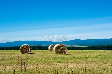 牧草ロールが広がる風景 北海道の写真素材 [FYI01251110]