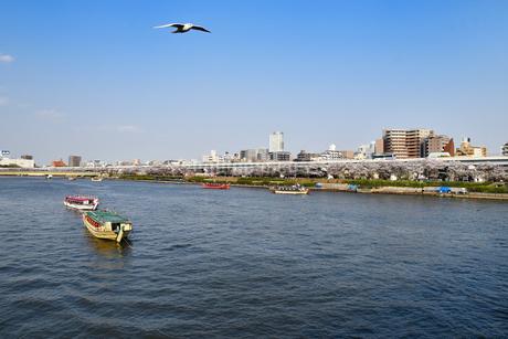 春の隅田川の写真素材 [FYI01251114]