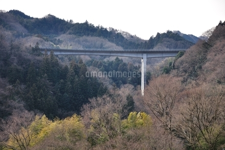 かながわの橋100選 青野原大橋の写真素材 [FYI01251205]