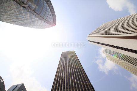 新宿高層ビル群と青空の写真素材 [FYI01251220]