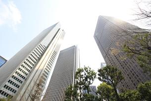 新宿高層ビル群と青空の写真素材 [FYI01251223]