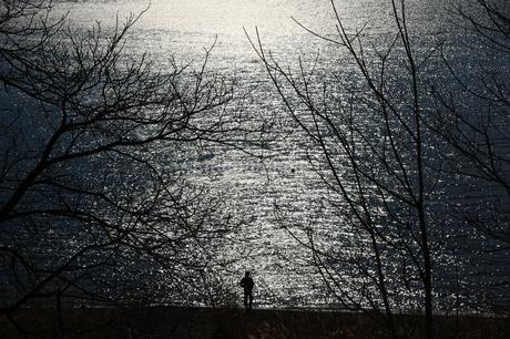 光る湖の写真素材 [FYI01251318]