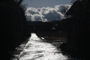 雨上がりの光る道の写真素材 [FYI01251320]