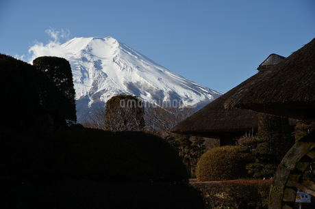 忍野からの富士山の写真素材 [FYI01251321]