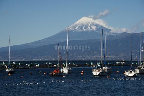 駿河湾からの富士山の写真素材 [FYI01251324]